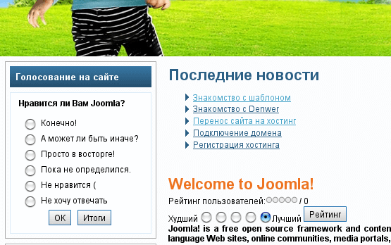 Модуль и компонент голосования Joomla 1.5 - opros na sayte 5