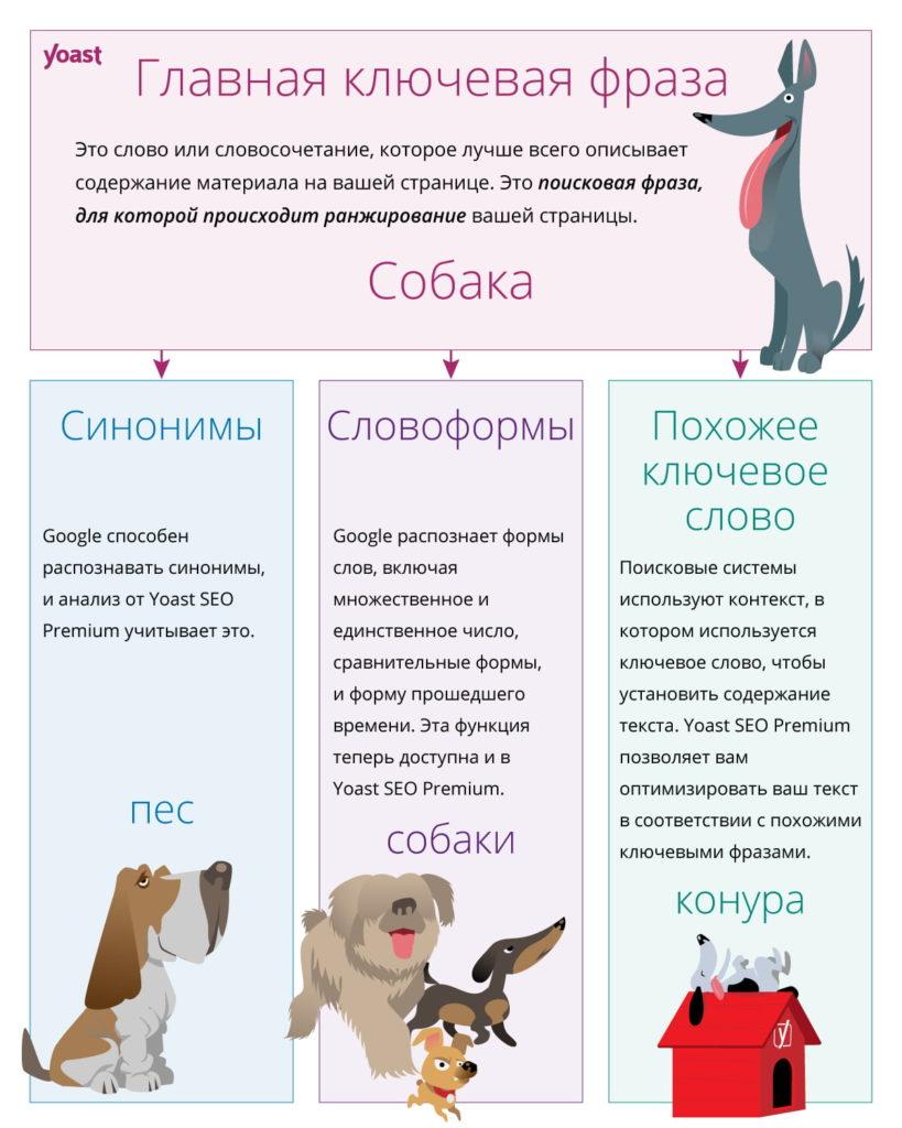 Yoast SEO 14.2: русские словоформы в бета-версии - yoast word forms ru 819x1024